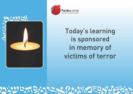 Selmon terror victims550__OP