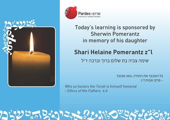 shari-pomerantz-a2-poster550