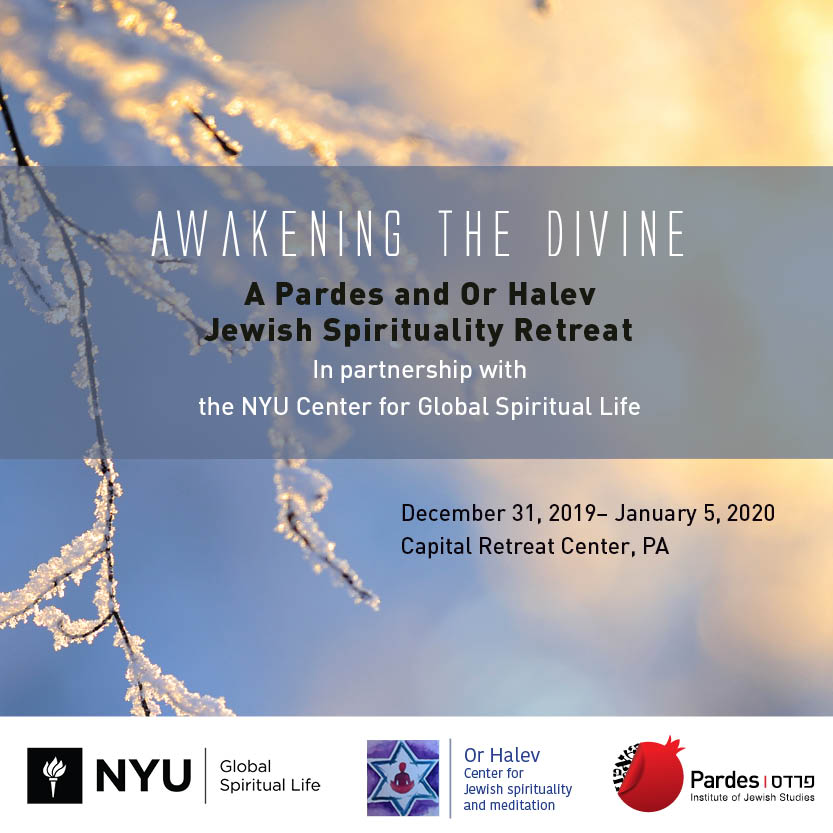 Awakening the Divine: A Pardes and Or HaLev Jewish
